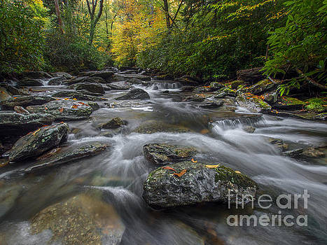Great Smoky Mountains. by Itai Minovitz