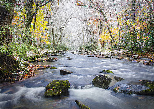 Great Smoky Mountains National Park NC - Two Seasons In One Day by Robert Stephens