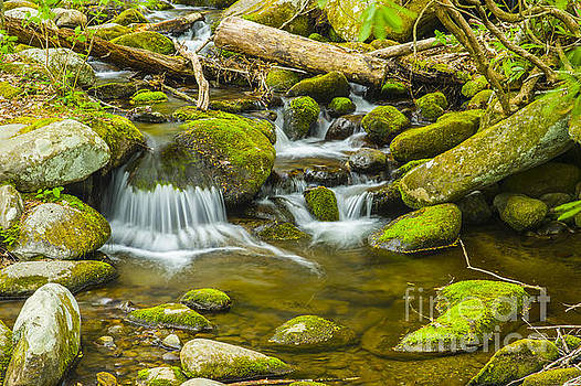 Relaxing meditation view of Great Smoky Mountains National Park River by Stefano Senise