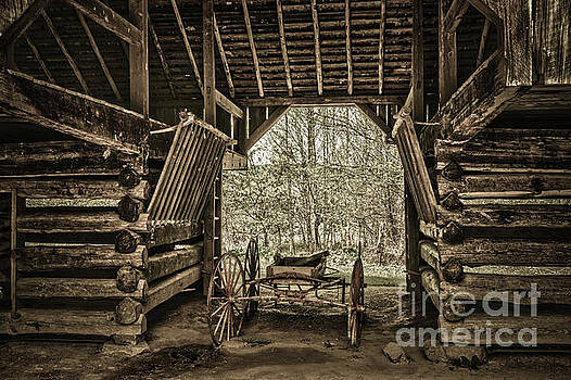 Great Smoky Mountains National Park, Tennessee - Broken wagon. Cades Cove by Stefano Senise