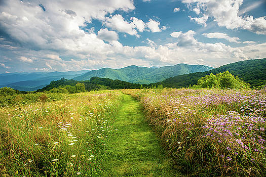 Great Smoky Mountains NC A Walk Through Paradise by Robert Stephens