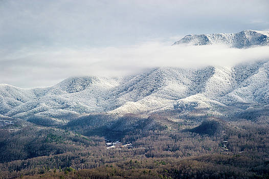 Great Smoky Mountains TN The Frosted Smokies by Robert Stephens