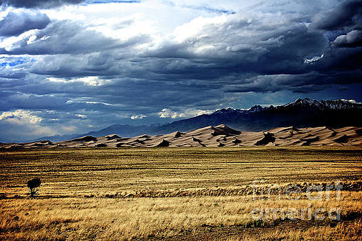 Great Stormy Sand Dunes by Steve Boice