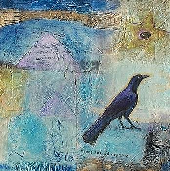 Great Taled Grackle by Cynthia Scontriano schildhauer