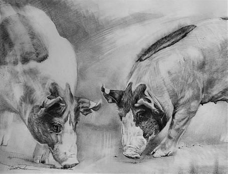 Greedy Pigs by Susie Gordon