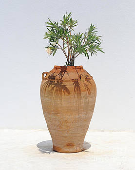 Greek terracotta pot on a white marble floor by Susan Wall