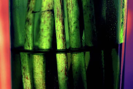 Green Abstract by Mariia Sorokina