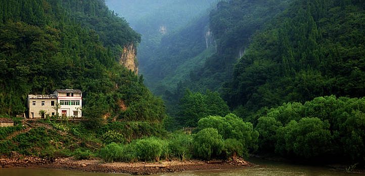 Green Along the Yangtze by Rick Lawler