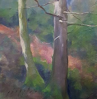 Green and Pink by Kelly Lanning Phipps