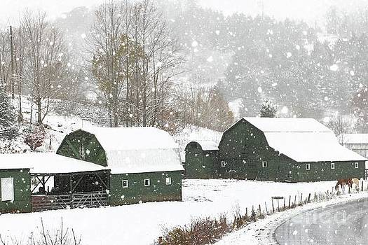 Green Barn Farm by Benanne Stiens