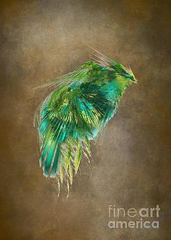 Justyna Jaszke JBJart - Green Bird - Fractal Art