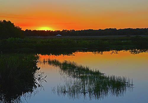 Green Cay Wetlands Sunset  by Allan Einhorn