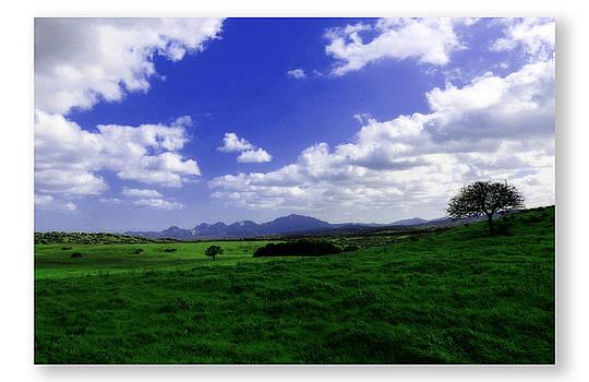 Green Country by Antonello  Monni