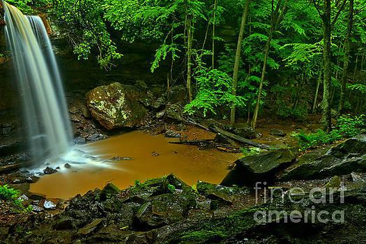 Adam Jewell - Green Cucumber Falls Canyon
