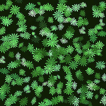 Bamalam Photography - Green Daisies