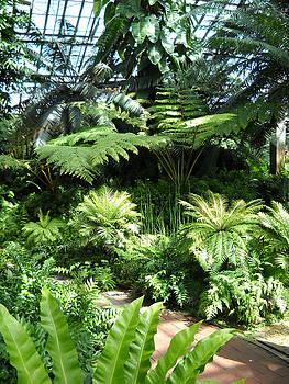 Green Eden by John Arthur Robinson
