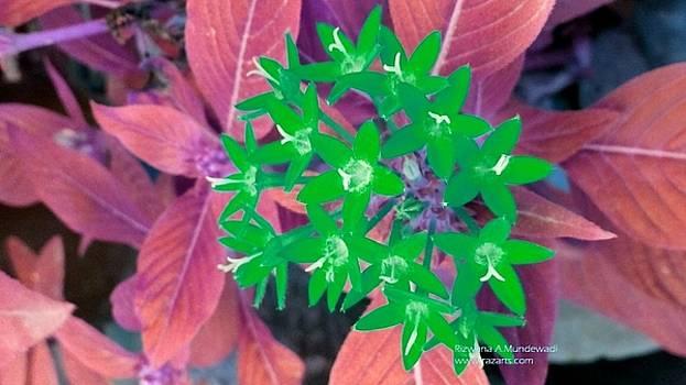 Rizwana A Mundewadi - Green Flowers