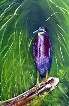 Green Heron by Brenda Everett