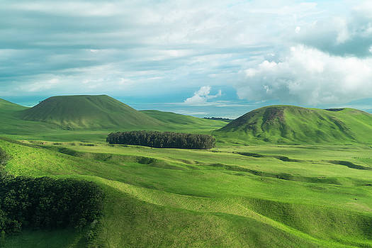 Green Hills on the Big Island of Hawaii by Larry Marshall