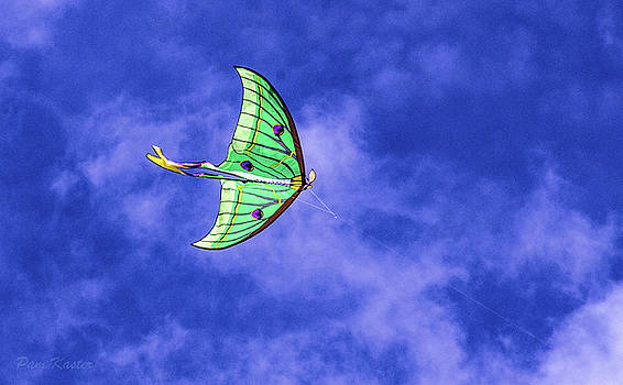 Green Kite by Pam Kaster