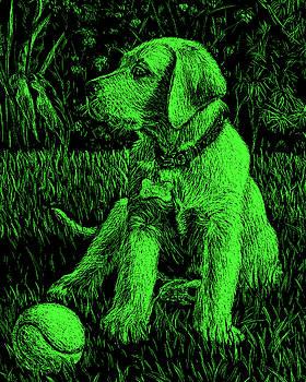 Green Labrador Puppy Dog by Irina Sztukowski