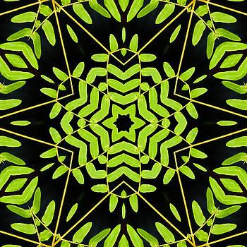 Green Leaves Kaleidoscope by Cindi Ressler