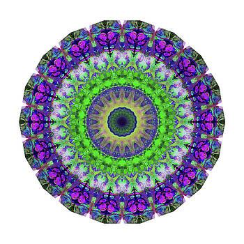 Sharon Cummings - Green Light Mandala Art by Sharon Cummings