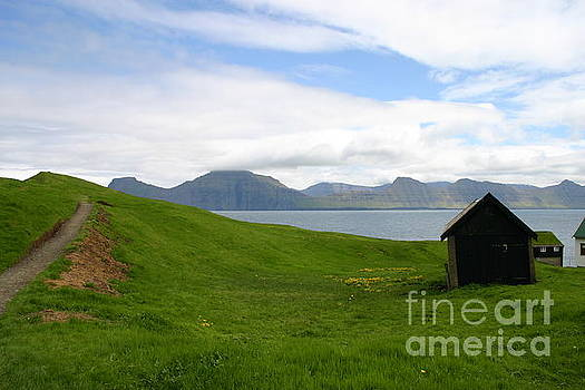 Green meadow by Susanne Baumann