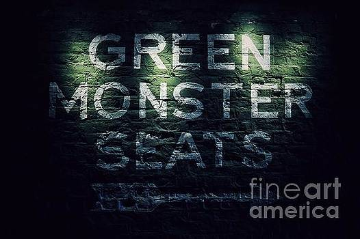 Green Monster Seats  by SoxyGal Photography