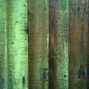 Green Mood by Anne Kotan