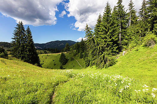 Green Mountain by Evgeni Dinev