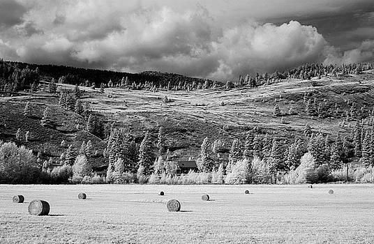 Bill Kellett - Green Mountain Farm