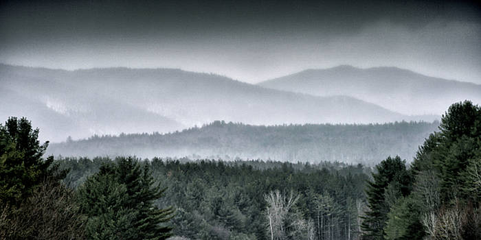 Green Mountain National Forest - Vermont by Brendan Reals