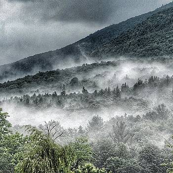Green Mountains with fog by Penni D'Aulerio