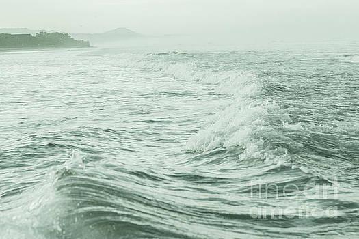 Green Ocean by Iris Greenwell