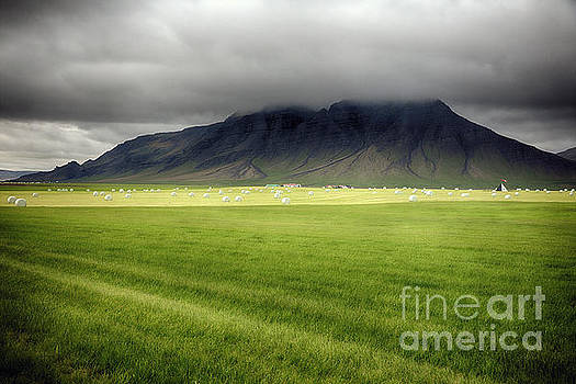 Green Pastures of Iceland by George Oze