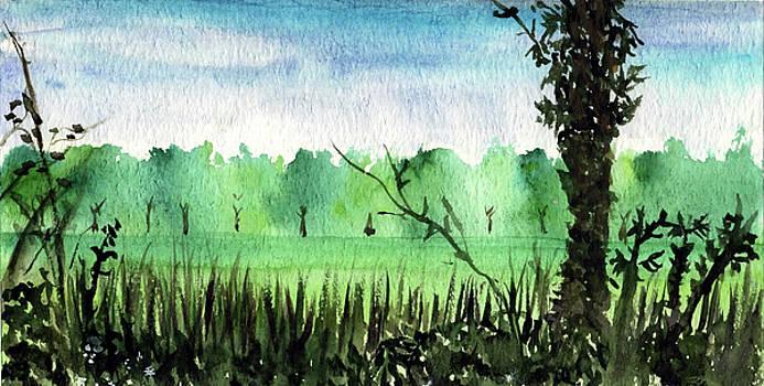 Green path by   KliKaMi