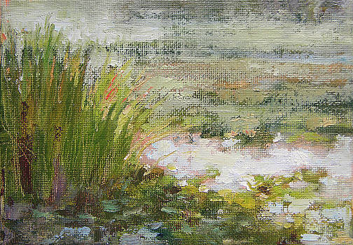 Green Pond by Tracie Thompson