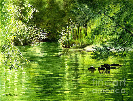 Sharon Freeman - Green Reflections with Sunlit Grass