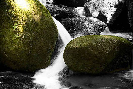 Green Rocks and Ham by Steve Shockley