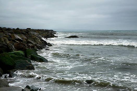 Green Rocks on a Stormy Day by Lon Casler Bixby