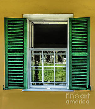 Green Shutters and Yellow Wall by Thomas Marchessault
