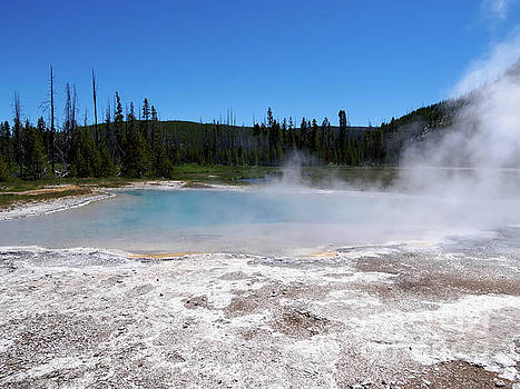 Green Spring Black Sand Basin Yellowstone National Park by Louise Heusinkveld