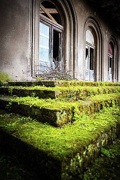 Green Steps by Svetlana Sewell