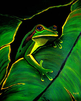 Nick Gustafson - Green Tree Frog and Leaf