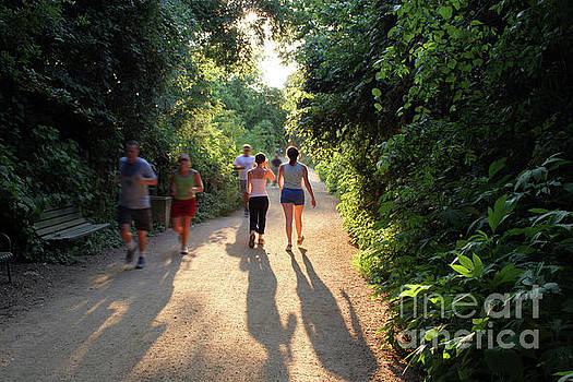 Herronstock Prints - Green trees and green belt make the Lady Bird Lake Hike and Bike Trail a runners paradise