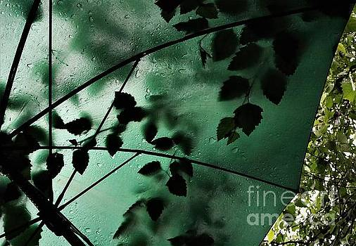 Green Umbrella Under the River Birch Tree  by Dee Winslow
