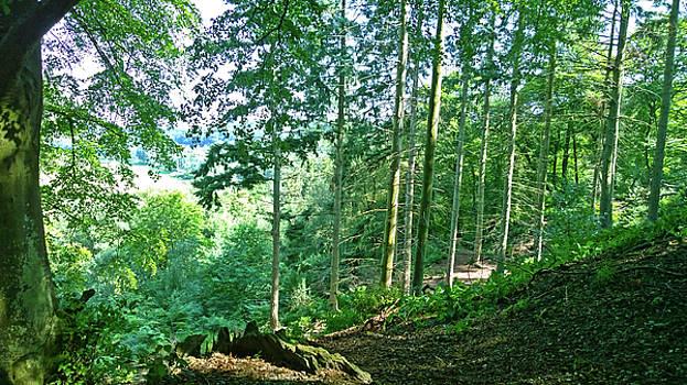 Green Valley by Anne Kotan