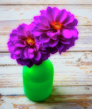 Green Vase And Dahlias by Garry Gay