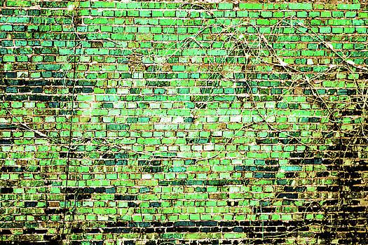 Green Wall by Mariia Sorokina